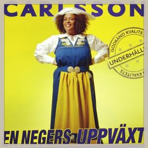 Marika Carlssons En negers uppväxt på Maximteatern