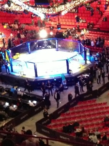 UFC - brorsans bild